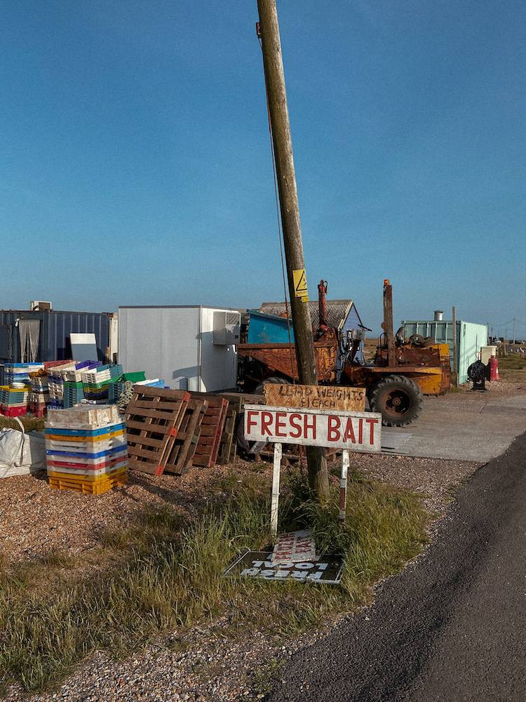 Fresh bait in the heart of Dungeness