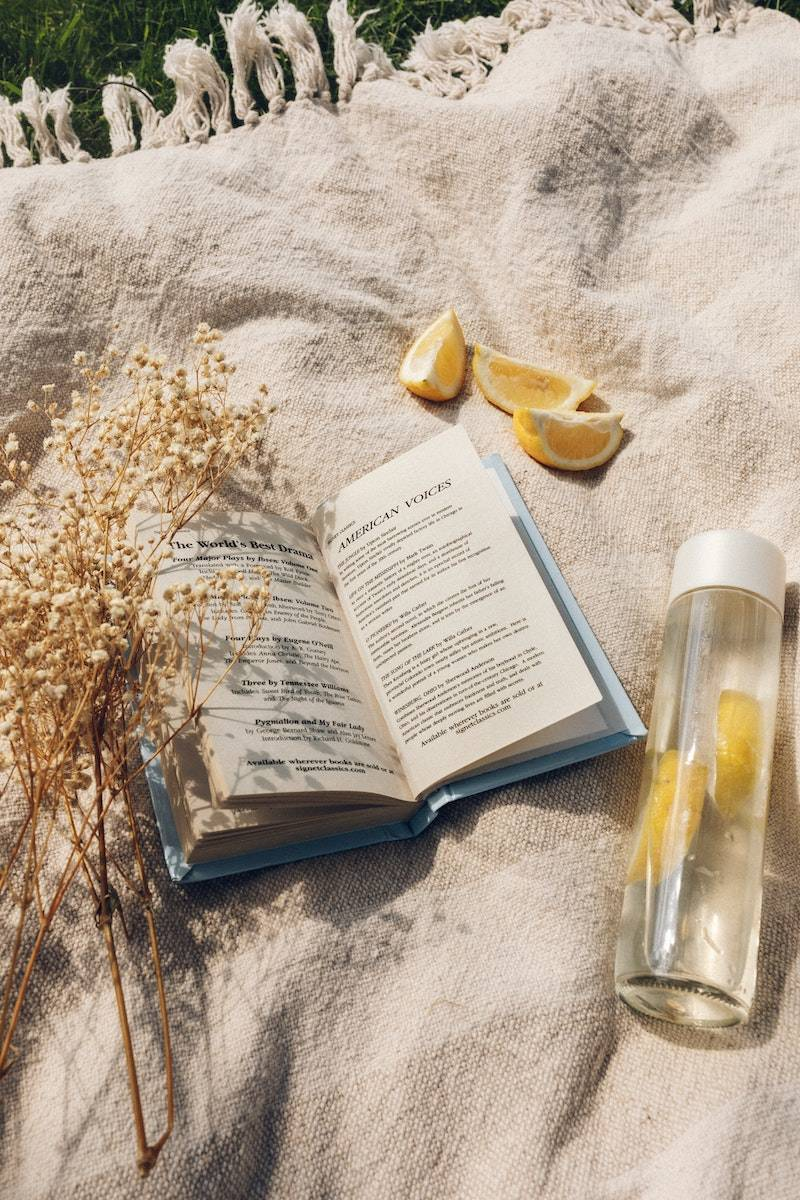 Image of a book on a beige blanket and lemon water is used purely for decorative reasons for the blog post, how to get started on a wellness journey that makes you feel good